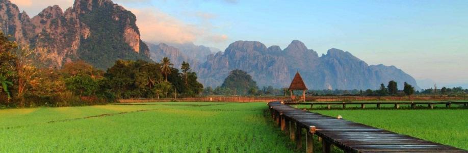 Wanchai Donmuang Cover Image